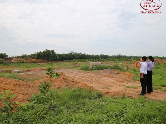 Huyện Long Thành kiến nghị công an điều tra Công ty địa ốc Alibaba - Ảnh 1.