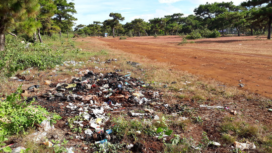 Trước ngày lễ hội, đồi cỏ hồng bị bôi bẩn bởi rác thải, kim tiêm - Ảnh 5.