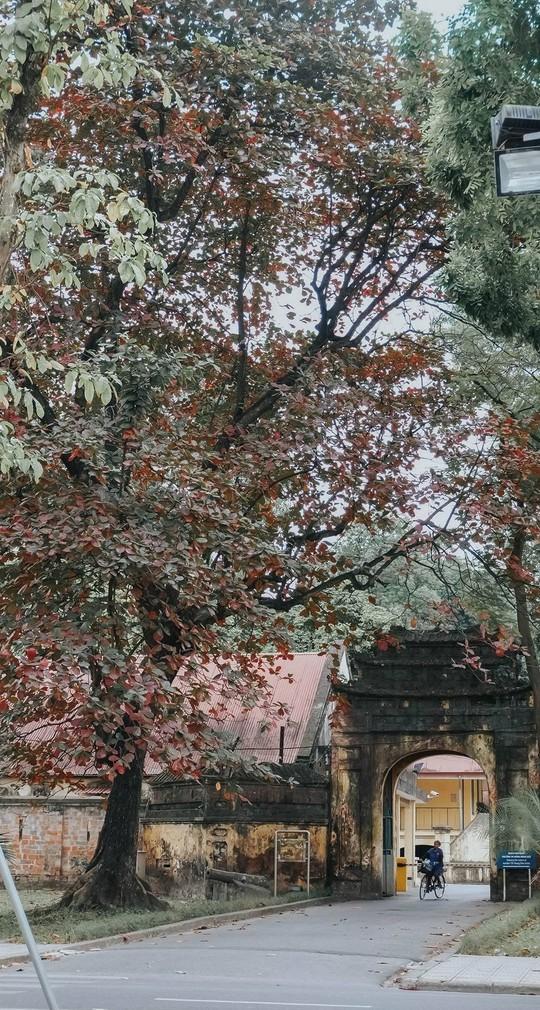 Ngắm Hà Nội xưa cũ qua những con phố nghìn năm tuổi - Ảnh 6.