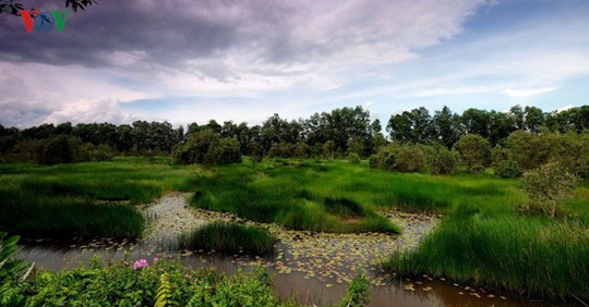Khám phá du lịch sinh thái kết hợp chữa bệnh ở Long An - Ảnh 2.