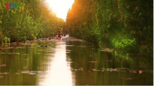 Khám phá du lịch sinh thái kết hợp chữa bệnh ở Long An - Ảnh 6.