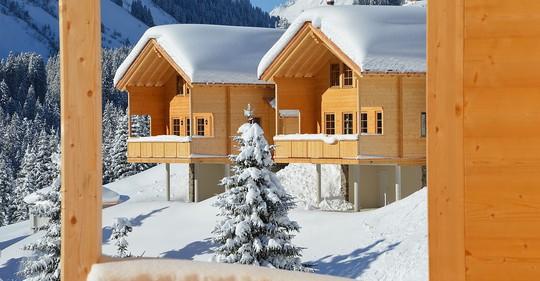 Ngắm những ngôi nhà đẹp như cổ tích trong mùa Giáng sinh - Ảnh 14.