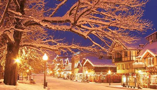 Ngắm những ngôi nhà đẹp như cổ tích trong mùa Giáng sinh - Ảnh 25.