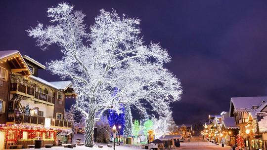 Ngắm những ngôi nhà đẹp như cổ tích trong mùa Giáng sinh - Ảnh 26.