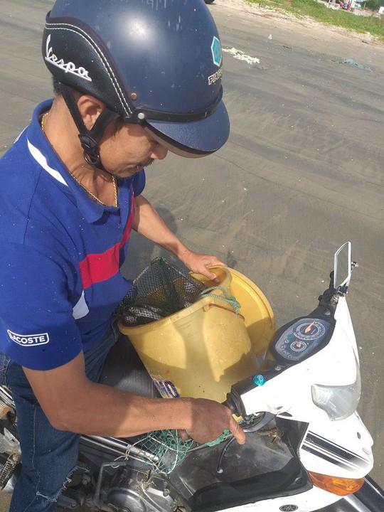Ngợp với cảnh đầy ắp cá đối áp sát bờ biển Đà Nẵng - Ảnh 6.