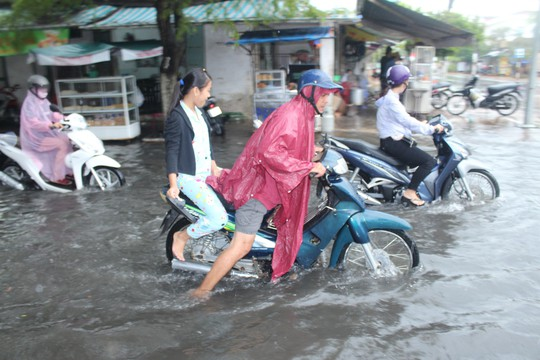 Cuối năm, nhiều tuyến đường ở Bạc Liêu chìm trong biển nước - Ảnh 3.