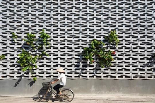 Căn nhà toàn lỗ ở Hưng Yên đẹp ấn tượng trên báo Mỹ - Ảnh 2.