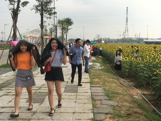 [VIDEO] - Nườm nượp đi xem cánh đồng hoa hướng dương ven sông Sài Gòn - Ảnh 14.
