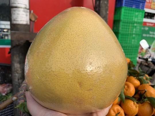 Bưởi Trung Quốc khổng lồ, vỏ vàng bóng tràn về chợ Việt - Ảnh 2.