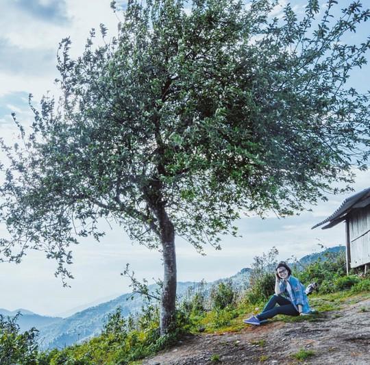 10 cây cô đơn sống ảo của giới trẻ Việt Nam - Ảnh 5.