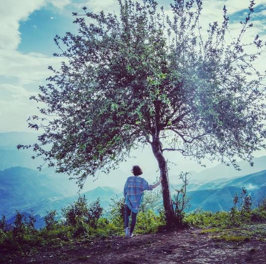 10 cây cô đơn sống ảo của giới trẻ Việt Nam - Ảnh 6.