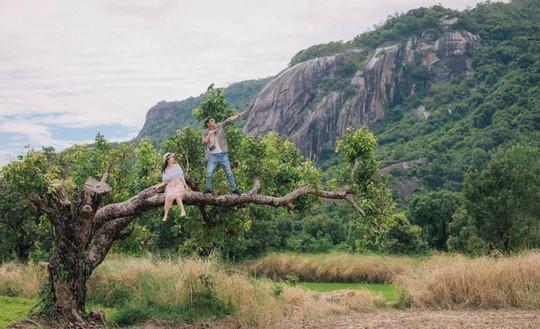 10 cây cô đơn sống ảo của giới trẻ Việt Nam - Ảnh 8.