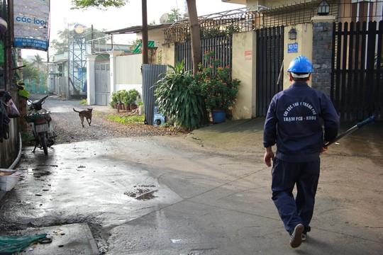 Biệt đội săn chó thả rông ở Sài thành - Ảnh 2.