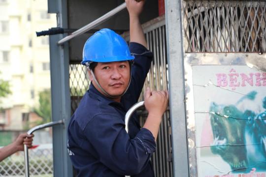 Biệt đội săn chó thả rông ở Sài thành - Ảnh 8.