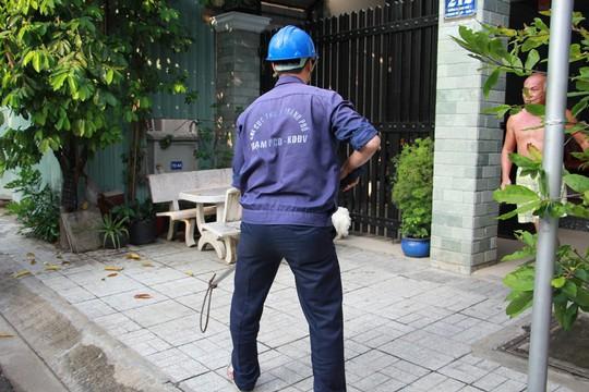 Biệt đội săn chó thả rông ở Sài thành - Ảnh 4.
