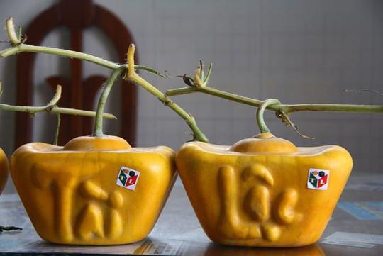 3,5 triệu đồng một trái dưa hấu thỏi vàng chưng Tết - Ảnh 3.
