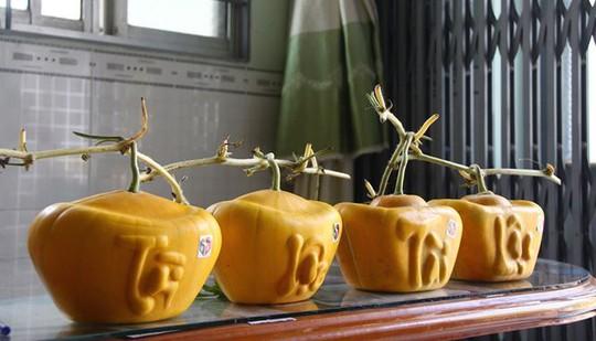 3,5 triệu đồng một trái dưa hấu thỏi vàng chưng Tết - Ảnh 4.