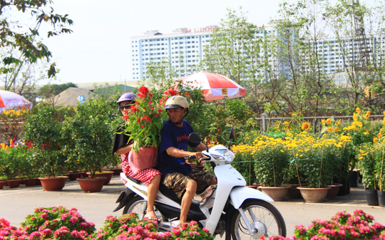 Khai mạc Chợ Hoa Xuân Bình Điền - Ảnh 5.