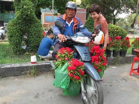 Hoa Tết dưới 200.000 đồng đắt hàng - Ảnh 1.