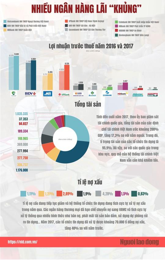 (Infographic) - Sức khỏe của hệ thống ngân hàng giờ ra sao? - Ảnh 1.