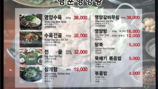 Nhà hàng thịt chó ở Pyeongchang vẫn mở cửa đón khách trong thời gian thế vận hội - Ảnh 1.