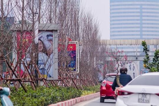 Hàng cây phong lá đỏ nảy lộc đón Tết giữa đường phố Thủ đô Địa ốc - Ảnh 1.
