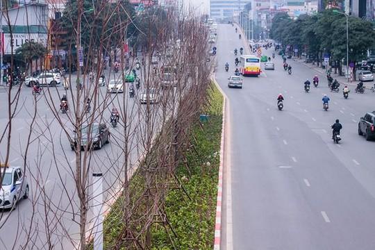 Hàng cây phong lá đỏ nảy lộc đón Tết giữa đường phố Thủ đô Địa ốc - Ảnh 11.