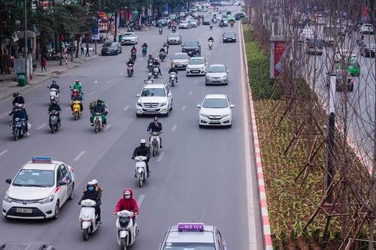 Hàng cây phong lá đỏ nảy lộc đón Tết giữa đường phố Thủ đô Địa ốc - Ảnh 8.