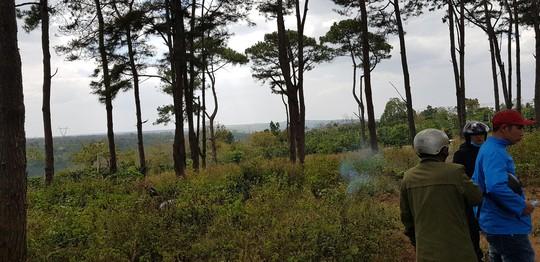 Đi thăm rẫy, tá hỏa phát hiện thi thể trong rừng thông - Ảnh 1.
