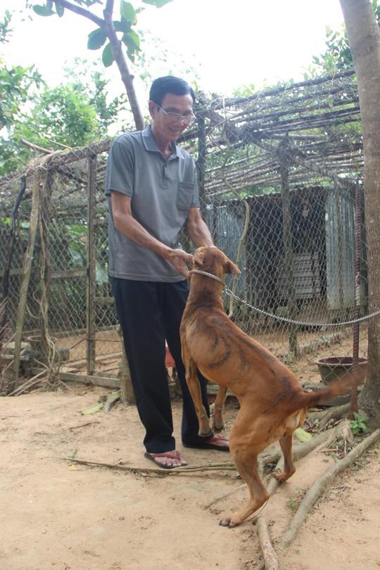 Chó xoáy - niềm tự hào của người dân Phú Quốc - Ảnh 1.