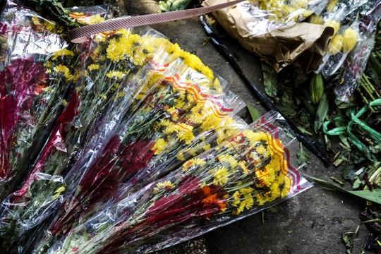 Hoa Tết dội chợ, chất như núi ở chợ hoa sỉ Đầm Sen, TP HCM - Ảnh 13.