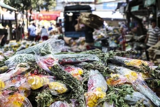 Hoa Tết dội chợ, chất như núi ở chợ hoa sỉ Đầm Sen, TP HCM - Ảnh 15.