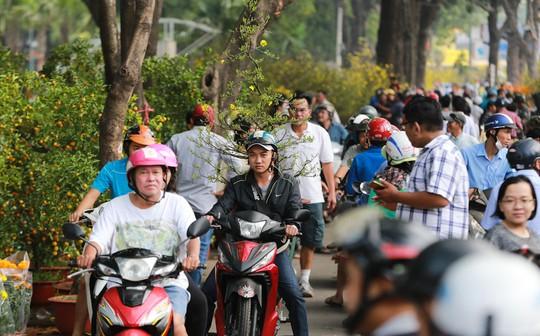 Hoa Tết dội chợ, chất như núi ở chợ hoa sỉ Đầm Sen, TP HCM - Ảnh 17.