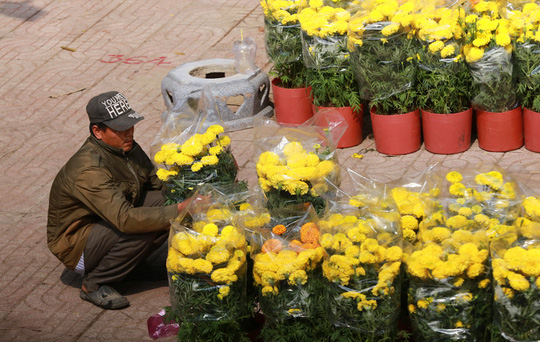 Hoa Tết dội chợ, chất như núi ở chợ hoa sỉ Đầm Sen, TP HCM - Ảnh 18.