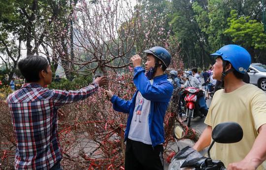 Hoa Tết dội chợ, chất như núi ở chợ hoa sỉ Đầm Sen, TP HCM - Ảnh 21.
