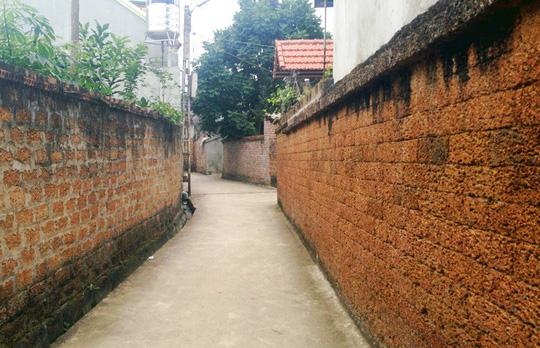 Đại gia xứ Đoài: 'Biệt phủ' đá ong gỗ mít bậc nhất đất Việt - ảnh 1