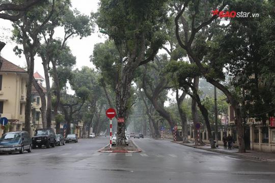 Không ồn ào vội vã, Sài Gòn - Hà Nội được trả lại vẻ yên bình trong ngày mùng 1 Tết - Ảnh 16.