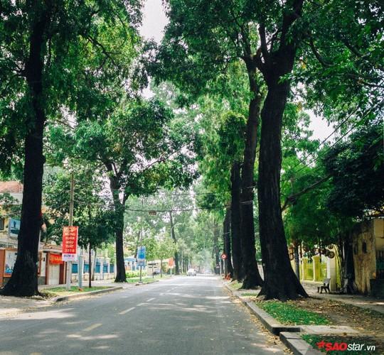 Không ồn ào vội vã, Sài Gòn - Hà Nội được trả lại vẻ yên bình trong ngày mùng 1 Tết - Ảnh 3.