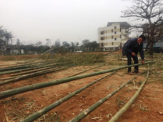 Độc đáo chợ bán cây nêu ngày Tết - Ảnh 4.