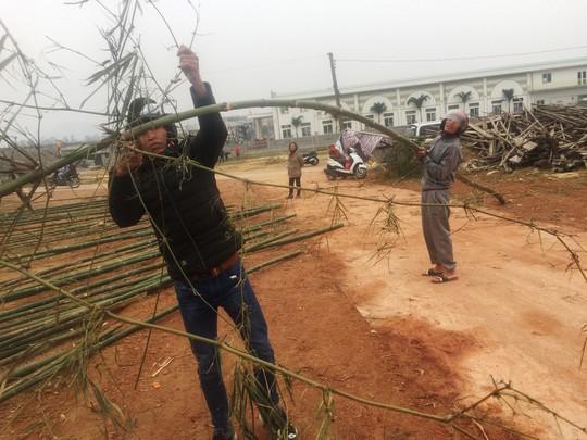 Độc đáo chợ bán cây nêu ngày Tết - Ảnh 2.