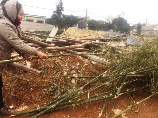 Độc đáo chợ bán cây nêu ngày Tết - Ảnh 5.