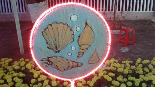 """Ngắm đường hoa Xuân """"hải sản"""" đặc sắc ở Côn Đảo - Ảnh 26."""