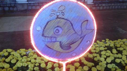 """Ngắm đường hoa Xuân """"hải sản"""" đặc sắc ở Côn Đảo - Ảnh 29."""