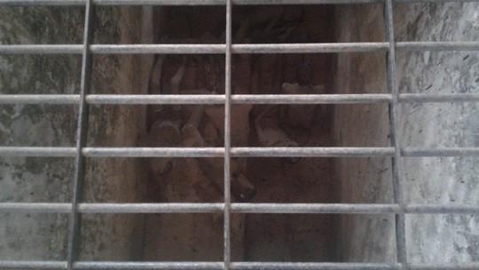 Đầu năm, tấp nập người viếng mộ chị Sáu và tham quan nhà tù Côn Đảo - Ảnh 19.
