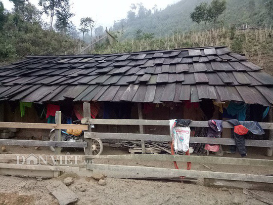 Ngôi làng 100% hộ nghèo nhưng nhà nào cũng làm bằng gỗ quý pơmu - Ảnh 2.