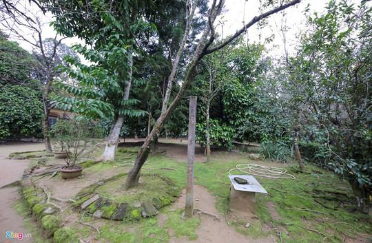 Nhà vườn 5.000 m2 cổ nhất xứ Huế - Ảnh 15.