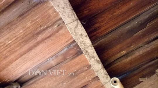 Ngôi làng 100% hộ nghèo nhưng nhà nào cũng làm bằng gỗ quý pơmu - Ảnh 4.