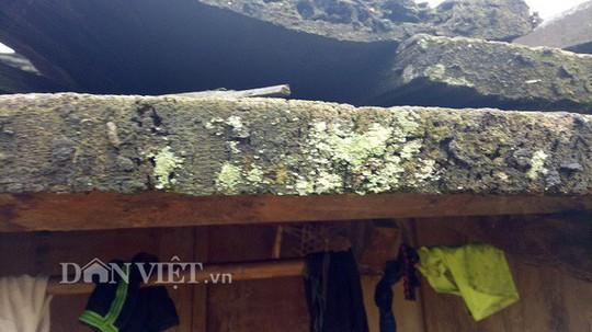Ngôi làng 100% hộ nghèo nhưng nhà nào cũng làm bằng gỗ quý pơmu - Ảnh 10.