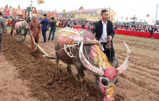 3 trâu đoạt giải trang trí vinh dự cày ruộng trong lễ hội Tịch Điền - Ảnh 4.