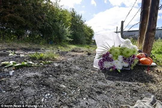 Vụ cô gái Việt bị thiêu sống ở Anh: Hé lộ tin nhắn sa đọa của nghi phạm - Ảnh 3.